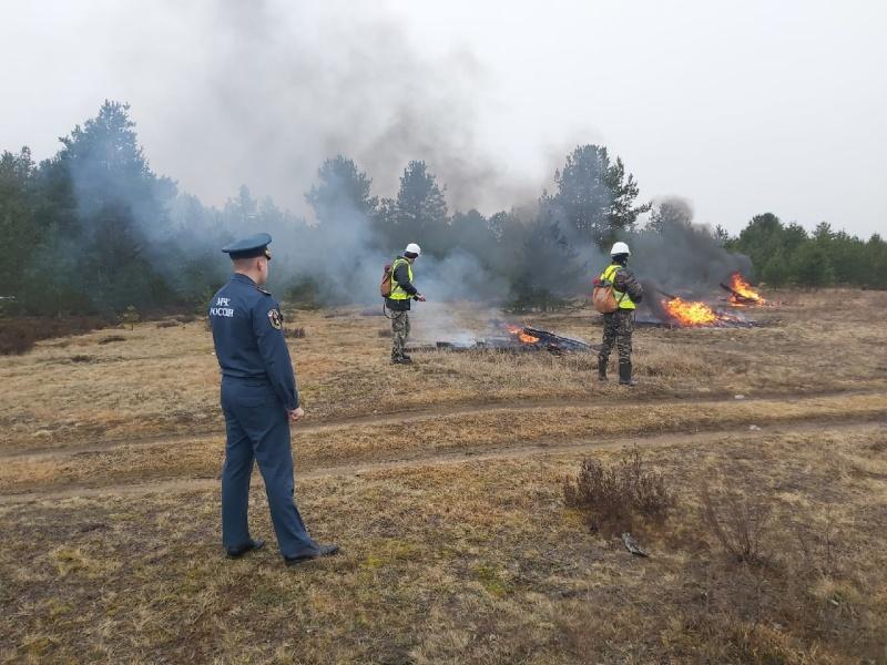 Профилактические мероприятия по недопущению природных пожаров прошли в Лодейнопольском районе